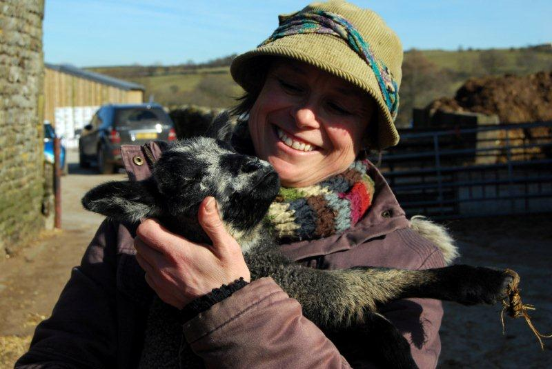 'Down on the Farm' is a YDMT project helping to forge links between farms and schools