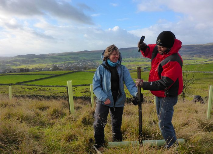 Tree planting in the Yorkshire Dales with Chris from Cooper King Distillery